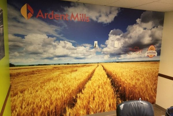 Wall Wrap Wheat